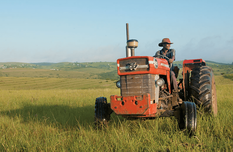 Contribution Of The Agricultural Sector To South Africa Economy